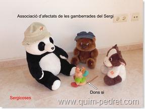SergicosesQuimPedret1